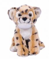 Cheetah knuffeldier 20 cm