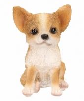 Chihuahua hond huiskamer beeldje