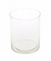 Cilinder vaas helder glas 30 cm