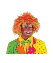 Clownspruik felle kleuren volwassenen