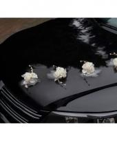 Cremekleurige rozen voor op de auto