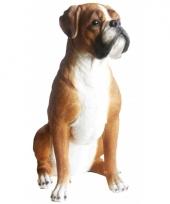 Decoratie beeld boxer hond 47 x 41 x 24 cm