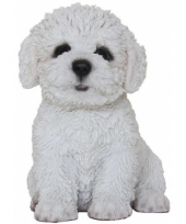 Decoratie beeld hondje bichon frise 15 cm