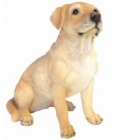 Decoratie beeld labrador hond 40 cm