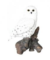 Decoratie beeld sneeuwuil vogel 32 cm