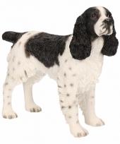 Decoratie beeld springer spaniel hond 14 cm