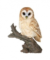 Decoratie beeld uil vogel 32 cm