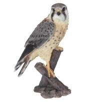 Decoratie beeld valk vogel 31 cm