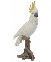 Decoratie beeld witte kaketoe 40 cm