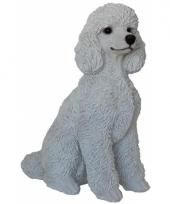 Decoratie beeld witte poedel hond 32 cm