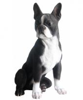 Decoratie beeld zittende boston terrier 41 x 26 x 25 cm