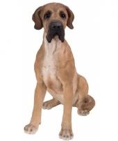 Decoratie beeld zittende bruine deense hond 36 cm