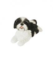 Decoratie beeld zwarte boomer hond 19 cm