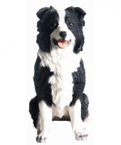 Decoratie beeldje border collie hond 26 cm