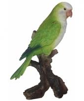 Decoratie beeldje groene dwergpapegaai