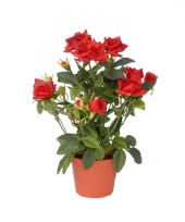 Decoratie bloemen in pot 10046436