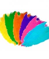 Decoratie gekleurde veren 50 cm