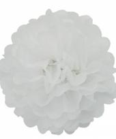 Decoratie pompom wit 35 cm