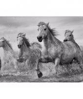 Decoratie poster paarden 61 x 96 cm