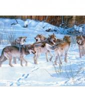Dieren placemats wolven