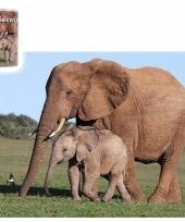 Dierenpuzzel olifant 40 delig