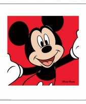 Disney mickey mouse poster van karton 40 x 40 cm