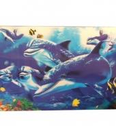 Dolfijn thema placemats en onderzetters