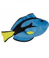 Dory vissen knuffel 30 cm