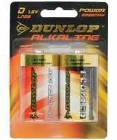 Dunlop 1 5 volt batterijen 2 stuks 10087259