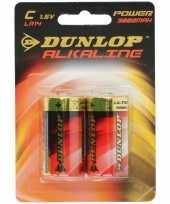 Dunlop 1 5 volt batterijen 2 stuks