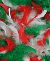 Feest boa groen rood wit