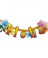Feestslinger aloha hawaii