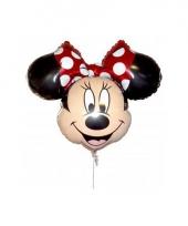 Folie ballonnen disney 10071052