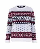 Foute kerst sweater voor kinderen