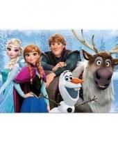 Frozen 3d placemat type 1