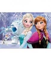 Frozen 3d placemat type 2