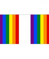 Gay parade regenboog vlaggenlijn 9 m