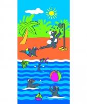 Gekleurd strandlaken farniente 70 x 140 cm