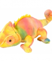 Gekleurde pluche kameleon 20 cm