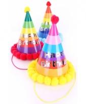 Gekleurde verjaardagshoed voor volwassenen