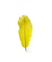 Gele zwarte piet veer 35 cm