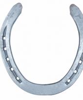 Gelukshoefijzer metaal 18 cm
