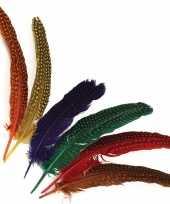Gestipte veren in verschillende kleuren