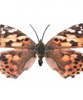 Gevlekt metalen vlinder 30 cm