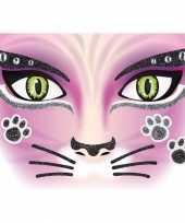 Gezicht glitter plakkers poes kat