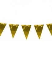Glimmende vlaggenlijn xl goud 10 meter
