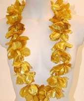 Gouden hawaii kransen