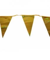 Gouden vlaggenlijn 3 meter
