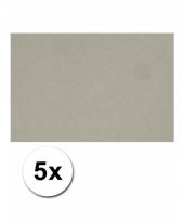 Grijs knutsel karton a4 5 stuks