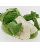 Groene kikker pantoffels voor dames